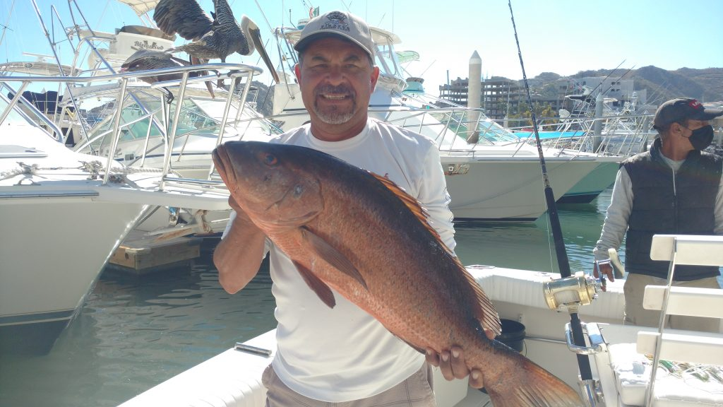 Great Inshore fishing during February