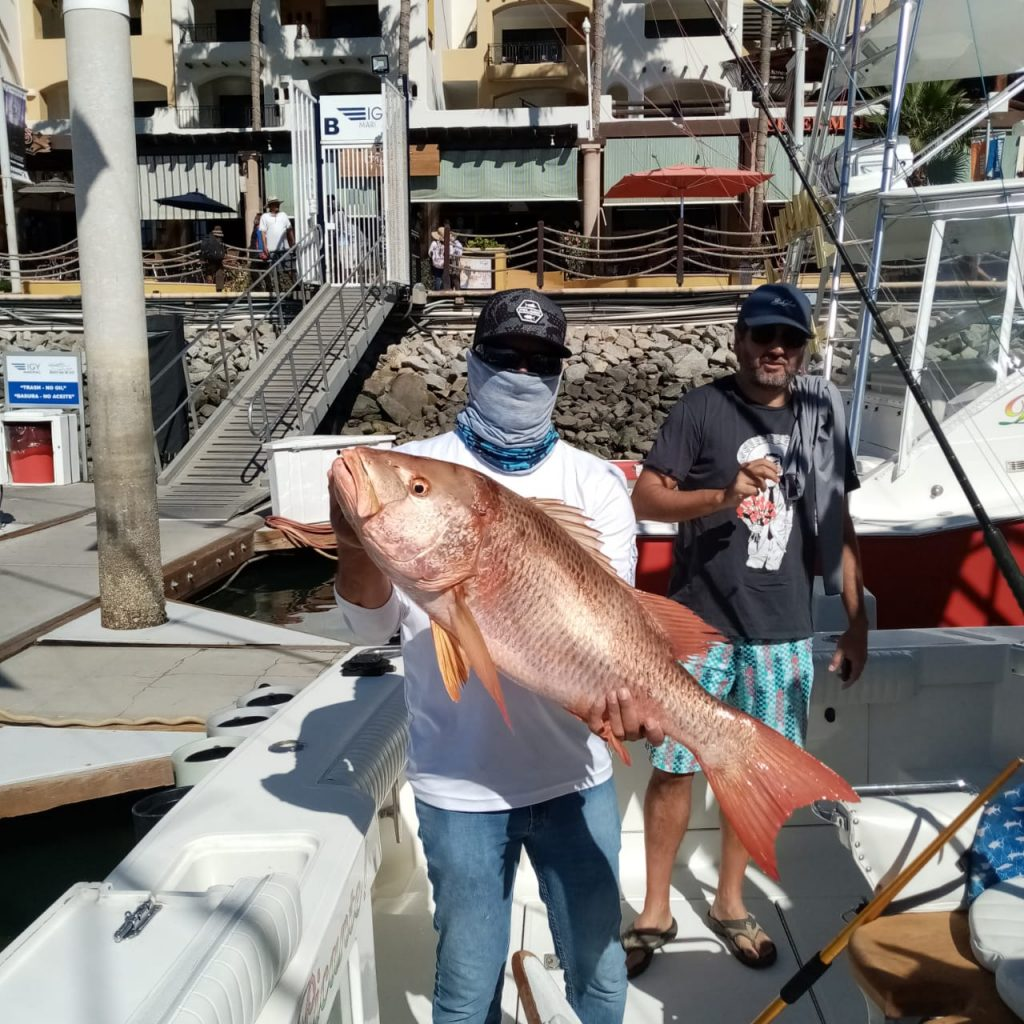 Red Snapper aboard Cabo Express 45' Picante 45