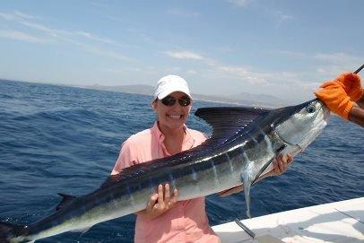 striped-marlin-fish-min