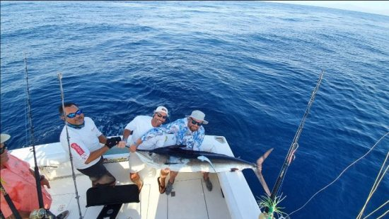 Lots of Striped Marlin action aboard the Picante fleet during Spring